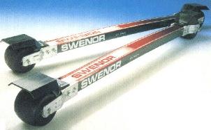 swenor.jpg (49736 byte)